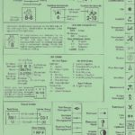 War in the Desert - Unit Identification Chart - Back